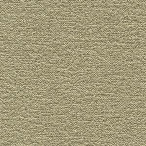 Ảnh map giấy dán tường TWP2357, texture giấy dán tường TWP2357