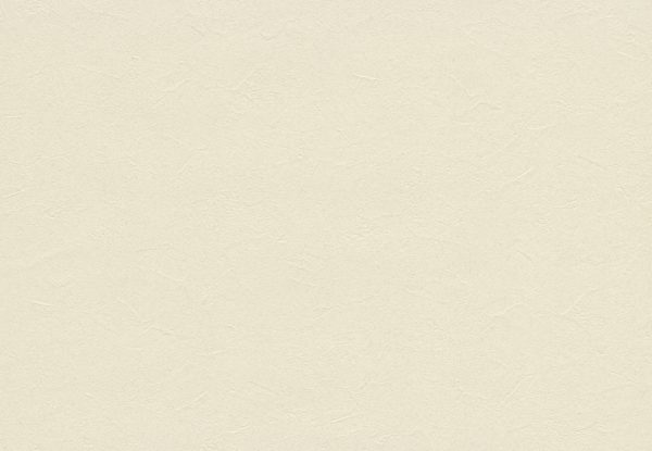 Ảnh map giấy dán tường TWP2606, texture giấy dán tường TWP2606