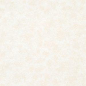 Ảnh map giấy dán tường Nhật Bản BB1659